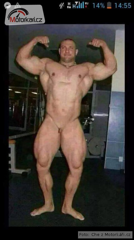 dlouhý penis